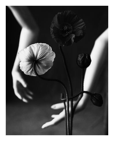 Mark Arbeit (photograph) ⇒ Buy hi-quality Prints. International ...